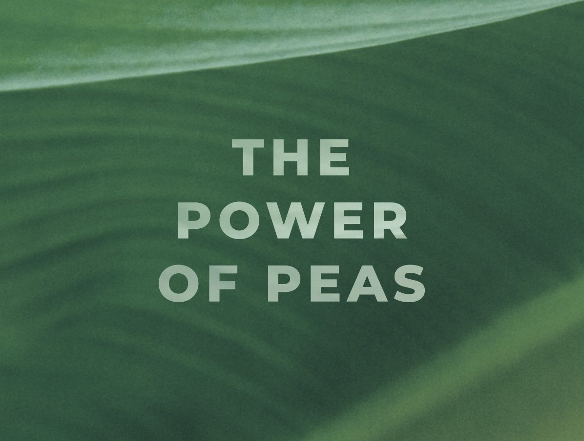 "An image shows a zoomed in picture of green plant life. Text on top of the image reads ""The Power of Peas"